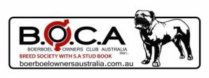 BOCA logo