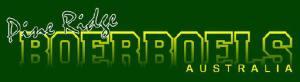 PR Boerboels Banner